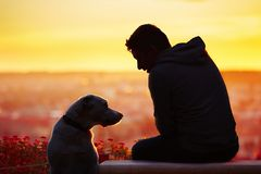 Man with dog at the sunrise Royalty Free Stock Photography