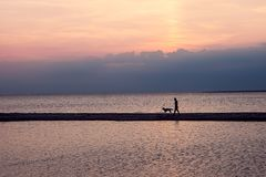 Man with dog on sunset background. St. Petersburg. Russia. radiance of lights, panorama of the city. landscape, on the background. Of the sea. Loneliness. A dog stock image