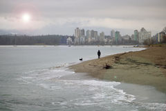 Man and Dog on Vancouver Waterfront Stock Image