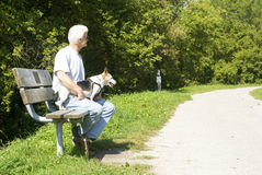 Man and Dog waiting Royalty Free Stock Photos