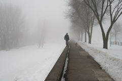 Man and dog walking in snow on misty winter day Stock Images