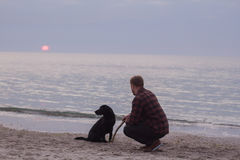 Man and dog watching sunrise. Young caucasian male walking with dog on the morning beach, sunset on the sea or ocean and man with black labrador puppy Stock Photos