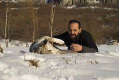 Man with dog in winter forest. Man and his Czechoslovakian wolf dog Royalty Free Stock Image