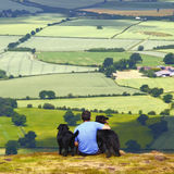 Man and dogs. Man and his dogs enjoying the famous view across Shropshire countryside from the top of the Wrekin, England Royalty Free Stock Images