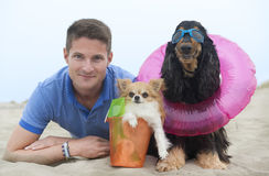 Man and dogs on the beach Royalty Free Stock Image