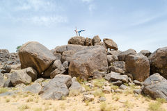 Man doing acrobatic movements on a rock #2 Royalty Free Stock Photo