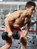 Man doing back workout Stock Photos