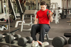 Man doing bicep curls in front of a mirror Royalty Free Stock Images