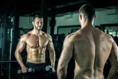 Man doing bicep curls. Young adult man doing bicep curls in modern gym Royalty Free Stock Images