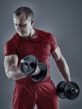 Man doing biceps curl with dumbbells Royalty Free Stock Photos