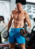Man doing biceps curl in gym Royalty Free Stock Photo