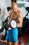 Man doing biceps curl in gym Royalty Free Stock Images