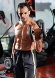 Man doing biceps curl in gym Stock Photos