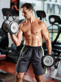 Man doing biceps curl in gym Royalty Free Stock Photos