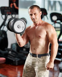 Man doing biceps curl in gym Royalty Free Stock Photography