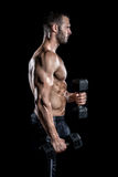 Man doing biceps curls in gym. Royalty Free Stock Photography