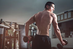Man doing biceps curls Stock Image