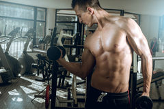 Man doing biceps curls Stock Images