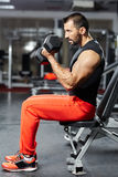 Man doing biceps workout in a gym Royalty Free Stock Images