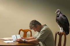 Man doing budget with a hungry vulture behind him Royalty Free Stock Photo