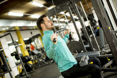 Man doing exercise for triceps in the gym on mashine Royalty Free Stock Photography