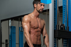 Man Doing Exercise For Triceps Royalty Free Stock Photo