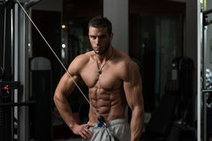 Man Doing Exercise For Triceps Royalty Free Stock Photos