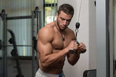 Man Doing Exercise For Triceps Stock Photos
