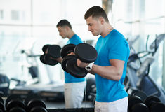 Man doing exercises dumbbell bicep muscles Stock Image