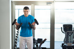 Man doing exercises dumbbell bicep muscles Stock Images