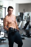 Man doing exercises dumbbell bicep muscles Stock Photography