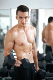 Man doing exercises dumbbell bicep muscles Royalty Free Stock Images
