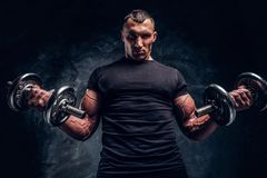 Man  is doing exercises with two dumbbells royalty free stock image