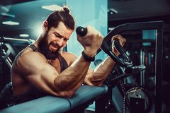 Man Doing Heavy Weight Exercise For Biceps On Machine In A Gym. Bearded Man Doing Heavy Weight Exercise For Biceps On Machine In A Gym Stock Images