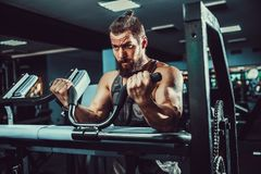 Man Doing Heavy Weight Exercise For Biceps On Machine In A Gym. Bearded Man Doing Heavy Weight Exercise For Biceps On Machine In A Gym Stock Photo