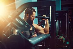 Man Doing Heavy Weight Exercise For Biceps On Machine In A Gym. Bearded Man Doing Heavy Weight Exercise For Biceps On Machine In A Gym Royalty Free Stock Image
