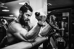 Man Doing Heavy Weight Exercise For Biceps On Machine In A Gym. Bearded Man Doing Heavy Weight Exercise For Biceps On Machine In A Gym Stock Image