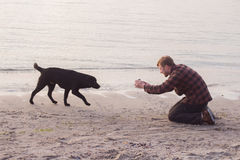 Man doing photo of his dog. Young caucasian male walking with dog on the morning beach, sunset on the sea or ocean and man with black labrador puppy Stock Photography