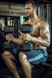 Man doing shoulder press. Young adult bodybuilder doing shoulder press while sitting stock image