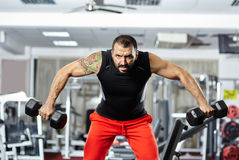 Man doing shoulder workout in a gym Stock Photo