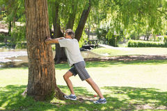 Man doing stretching exercise against tree Royalty Free Stock Images