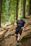 Man doing trail running in the forest Royalty Free Stock Images