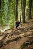 Man doing trail running in the forest Stock Image