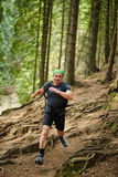 Man doing trail running in the forest Stock Photography