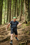 Man doing trail running in the forest Royalty Free Stock Photos