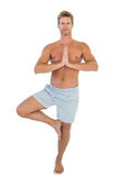 Man doing the tree pose Stock Photography
