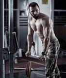 Man doing triceps workout Royalty Free Stock Images