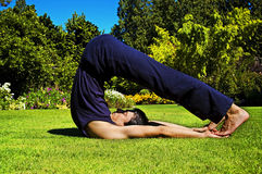 Man doing yoga in nature. Stock Photography