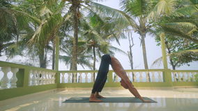 Man doing yoga outdoors. In India stock footage