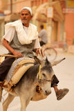 Man on a donkey Royalty Free Stock Image